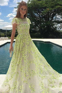 A-Line Lace Cap Sleeves Daffodil Tulle Long Prom Dress with Appliques PFP0149