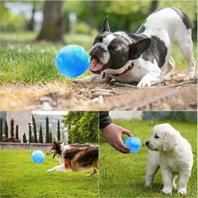 Magic Roller Ball Dog Toy 50% Off - Pets