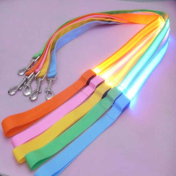 Premium Leash with Light