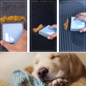 Pet Hair Cleaning Brush