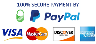 Paypal secure payment 86fef36b 3b7b 4325 8429 718239ea4e9a