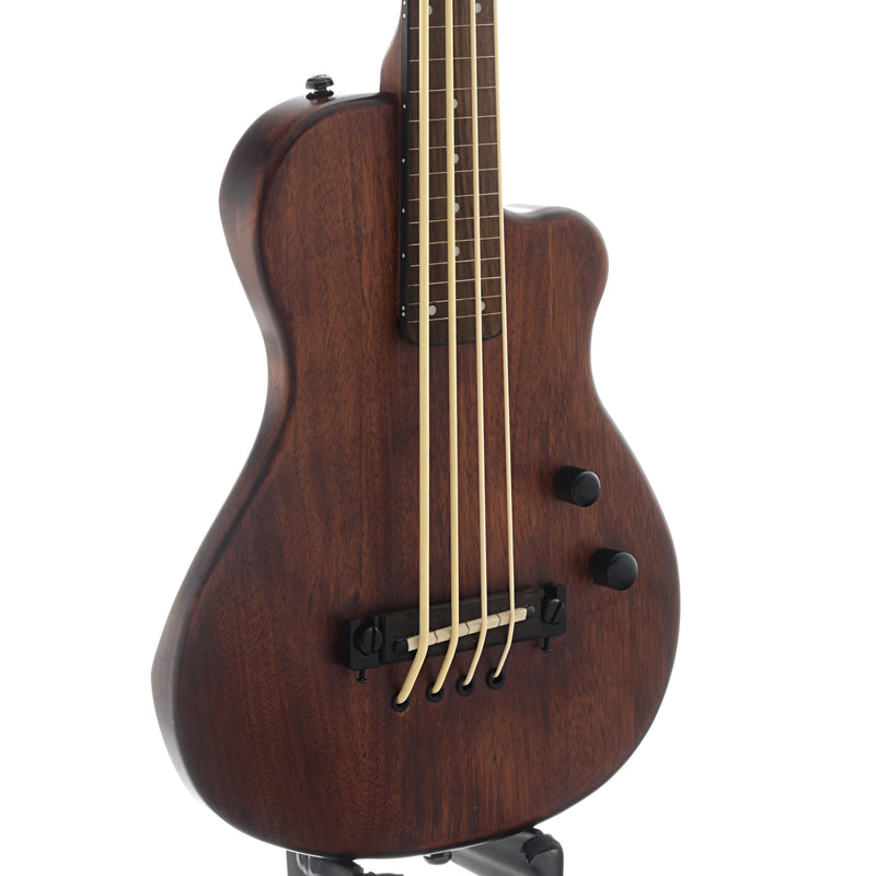 Gold Tone ME-Bass Fretless (recent)