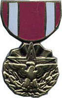 MERITORIOUS SERVICE HAT PIN