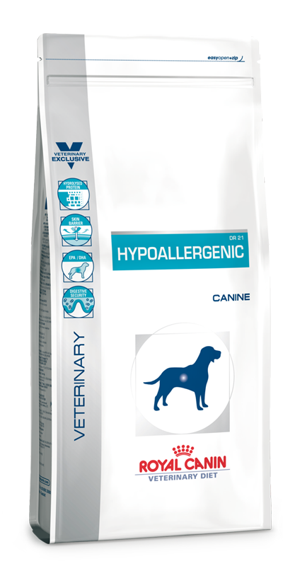 Hypoallergenic Dog | Marigin AG