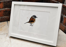 Dunnock Bird Painting - Original Artwork
