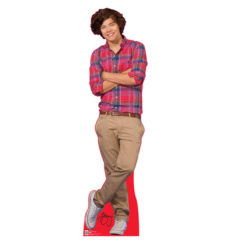 One Direction Harry Cardboard Cut Out Stand-Up