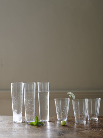 Set of 6 Sienna Linear Etched Water Glasses design by Canvas