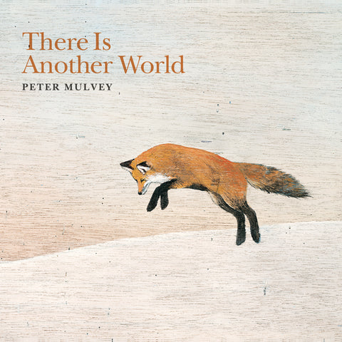 Peter Mulvey - Vinyl   There Is Another World