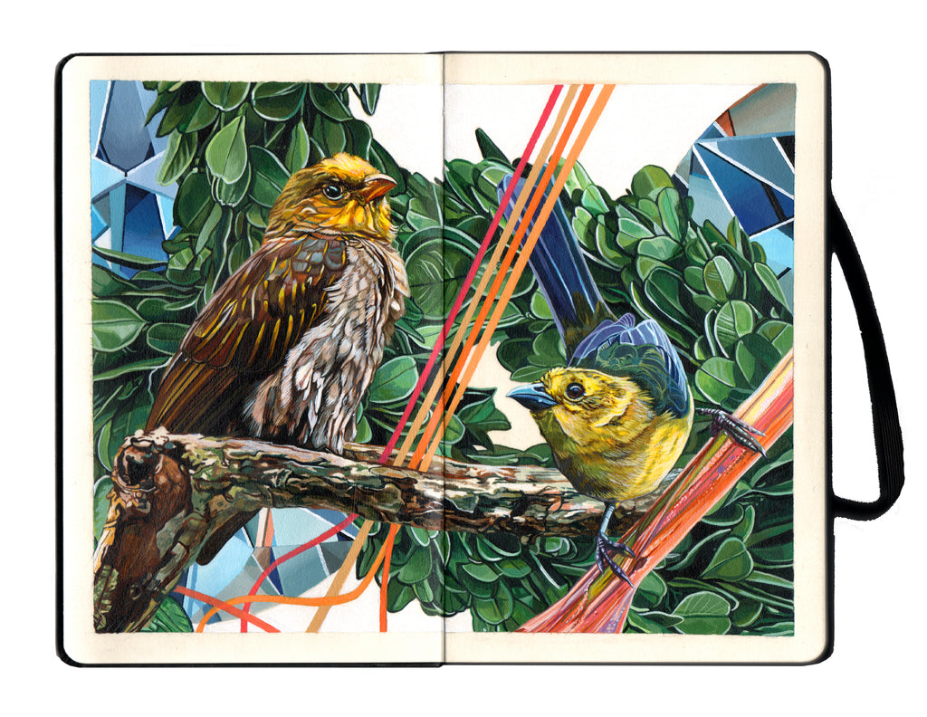 "Juan Travieso  - ""Endangered Birds #180a"""