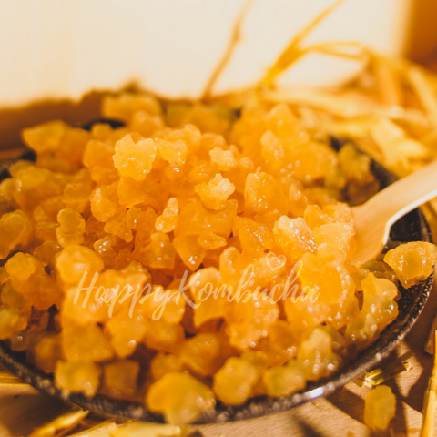 Live water kefir grains by happy Kombucha