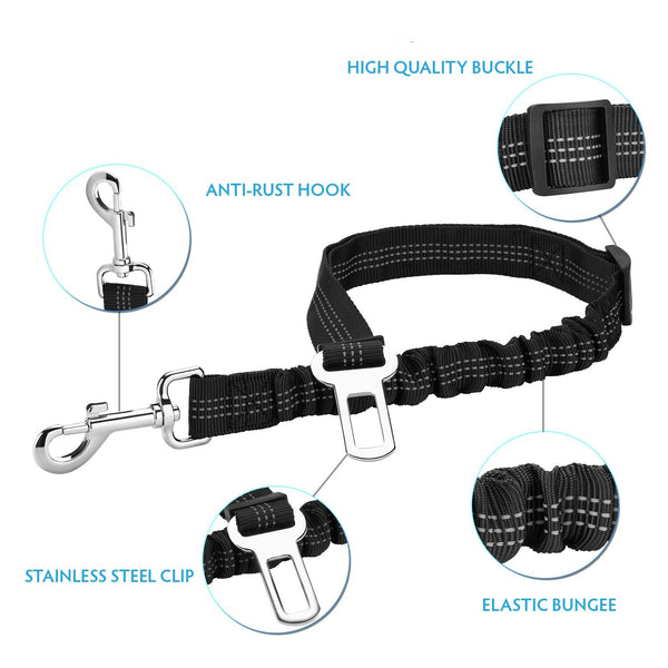 Bungee dog seatbelt leash without harness