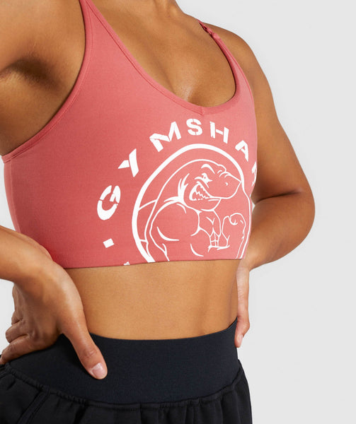 Gymshark Legacy Fitness Sports Bra - Brick Red 4