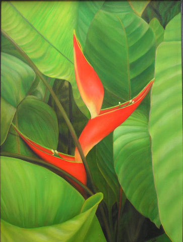 Dwarf Jamaican Heliconia Painting