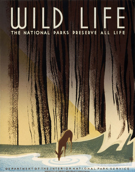 Wild Life: The National Parks Preserve All Life poster