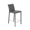Hasina Counter Stool in Gray with Polished Stainless Steel Legs - Set of 2