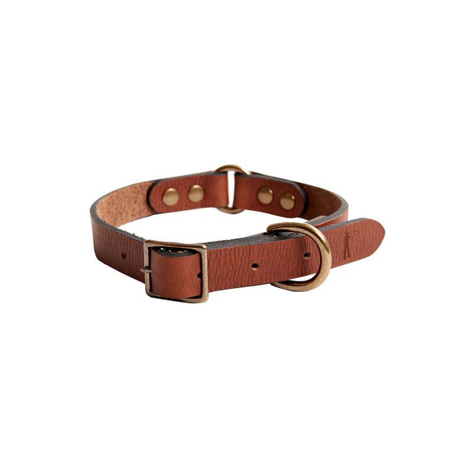 Dog Collar - Signature Leather