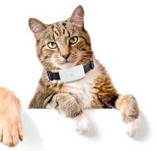 Load image into Gallery viewer, GPS Tracking Pet Collar
