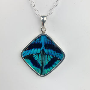 Blue Flash Butterfly Wing Diamond Shape Sterling Necklace