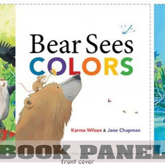 Bear Sees Colors Fabric Book Panel to Sew - QuiltGirls®