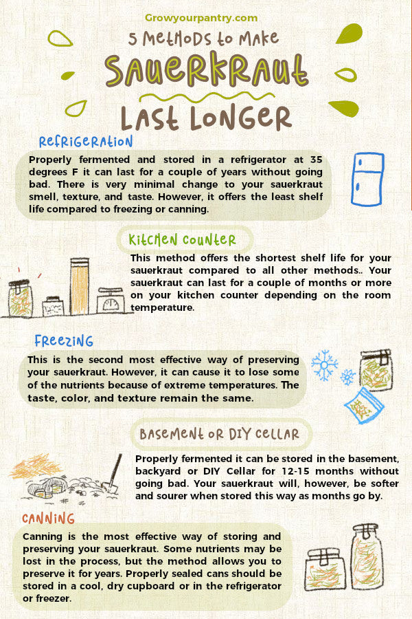how_to_make_sauerkraut_last_longer_infographic