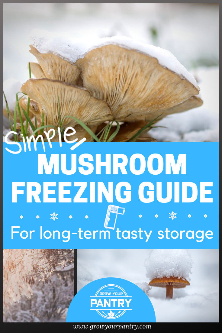 mushroom_freezing_guide_infographic