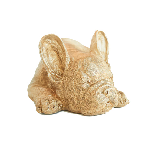 Sleeping Frenchie Sculpture/ Gold