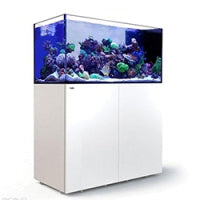 Red Sea Peninsula P500, 105 Gal. Aquarium Kit