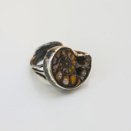 AMMONITE FOSSIL RING {silver}