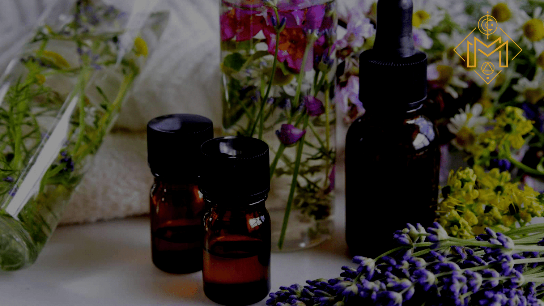 Essential Oil Benefits: 10 Reasons You Must Try Essential Oils
