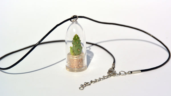 Baby Baobab Live Plant Necklace - Miniature Leather Cowhide Necklace Live Plant.