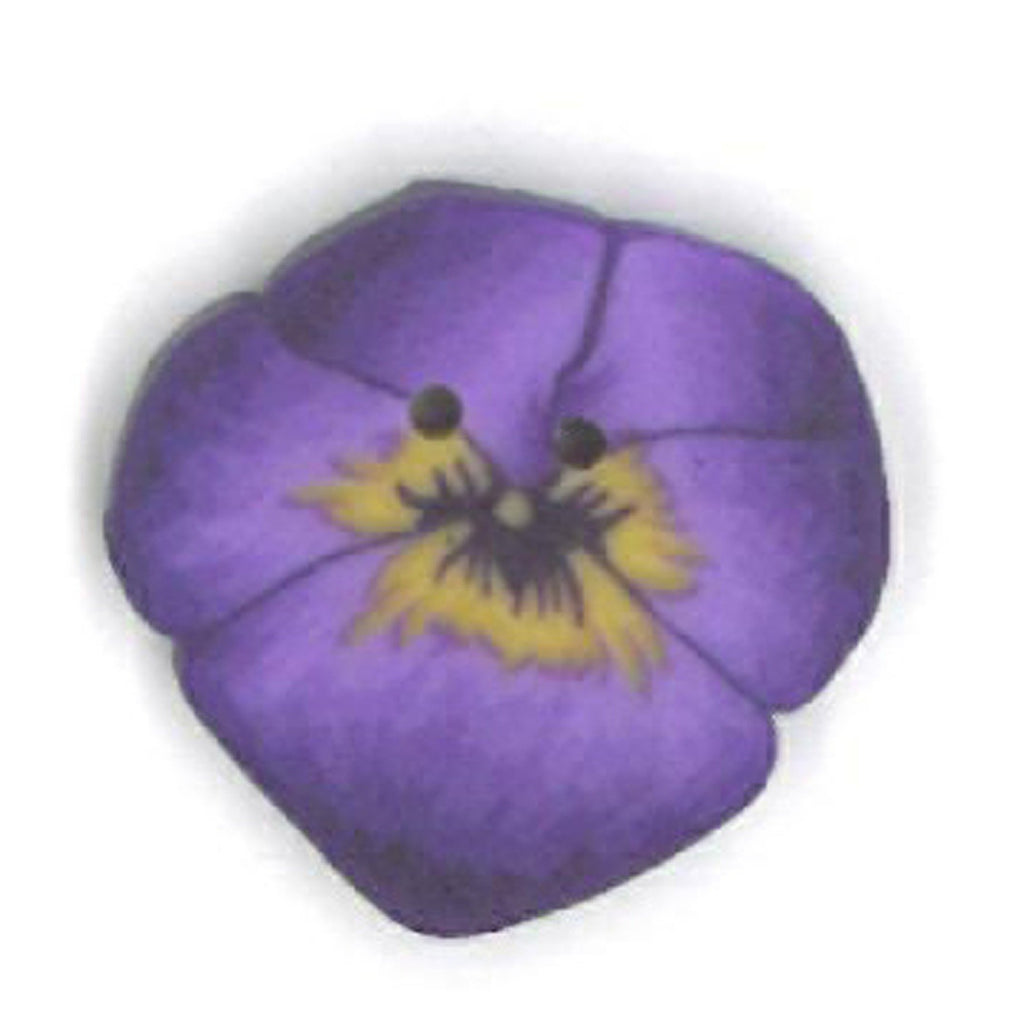 tiny purple pansy