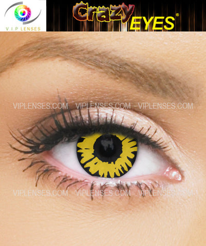 Crazy Black Wolf Contact Lenses