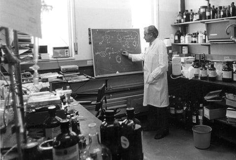 A photo of the famous Israeli organic chemist Raphael Mechoulam in his laboratory in front of a chalkboard.