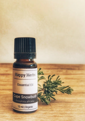Cape Snowbush Essential Oil - Happy Herbs