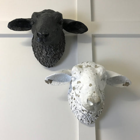 Sheep Head Wall Decoration Distressed Style 2 Colours