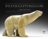"RESERVED** 14"" Striking Walking Bear by Isaaci Petaulassie"