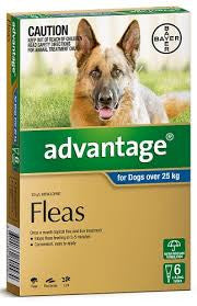Advantage Dog - Advantage Extra Large Dog (Grey), 25-50Kg
