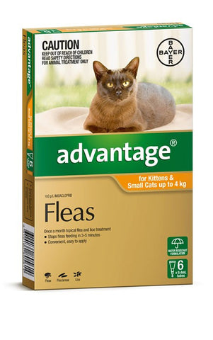 Advantage Cat - Advantage Kittens & Small Cats - (Orange) 0-4Kg