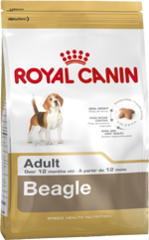 Royal Canin Dog - Royal Canin BEAGLE
