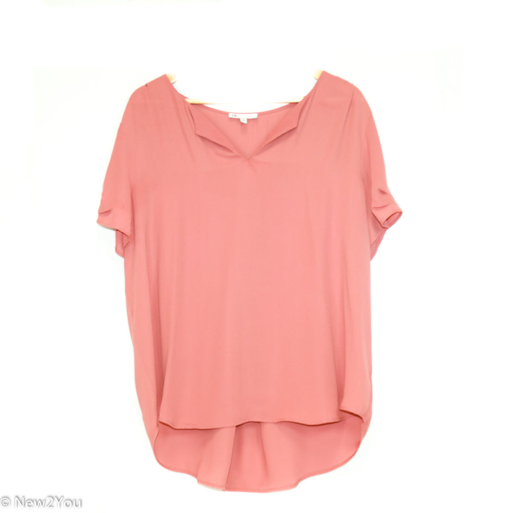 Dusty Rose Sheer Blouse (Dr2) - New2Youlx
