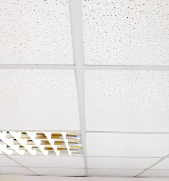 Ceiling Grid T15 White Main Bar 3.6 - 30207