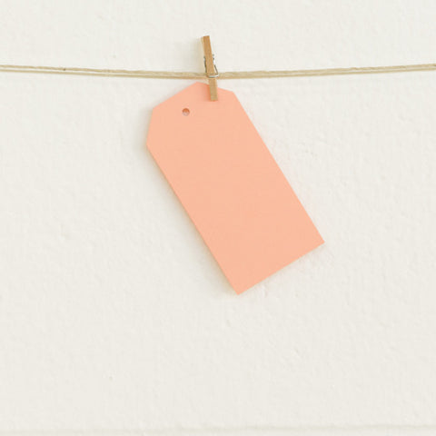 Shipping Tags, Melon, 20pk