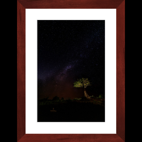 Milky Way Over African Boab Tree - Framed art photograph print
