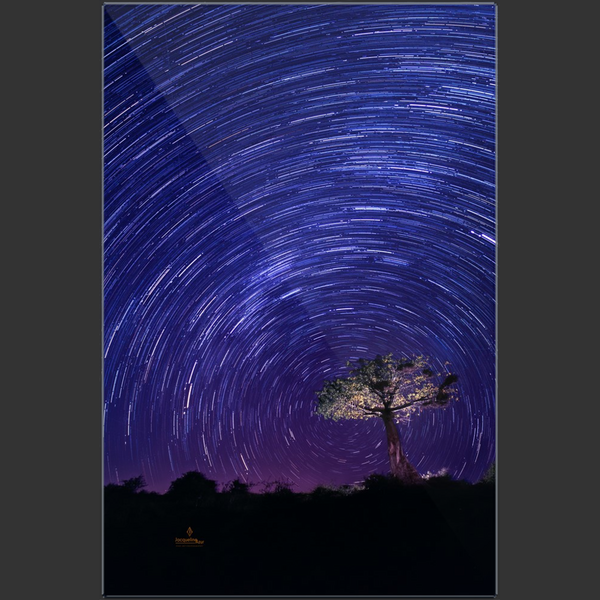 Star Trails in the African Sky - art photograph on metal print wall art
