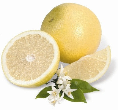 Grapefruit, White Essential Oil, Essential Oils, Golden's Naturals - Golden's Naturals = quality essential oils at affordable prices