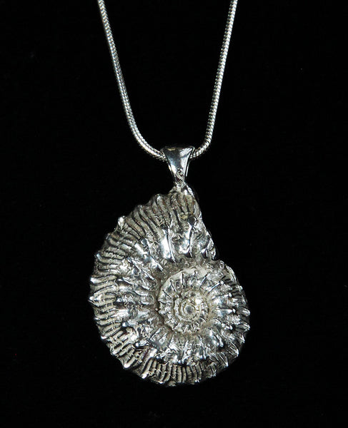 P-903 Ammonite Whole Pendant