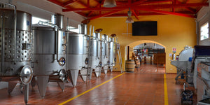 Vinification: The Art of Winemaking