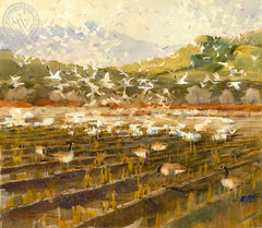 Taking Flight, Bosque del Apache, California art by Frank LaLumia. HD giclee art prints for sale at CaliforniaWatercolor.com - original California paintings, & premium giclee prints for sale
