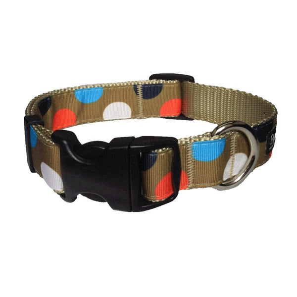 Paw Paws Dog Collar - Citrus Polka Dot