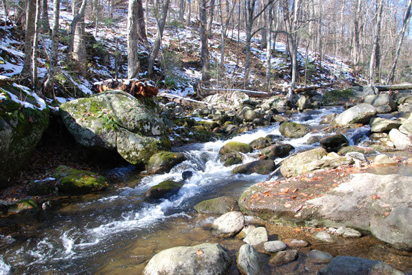 Mountain Trout Streams Fly Fishing Report- January 2, 2018